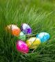 egg hunt grass
